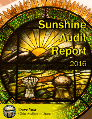 2016 Sunshine Audit Report