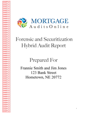 Forensic and Securitization Hybrid Audit Report Prepared For