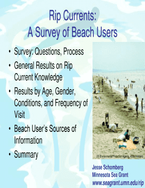 Rip Currents: A Survey of Beach Users - Minnesota Sea Grant