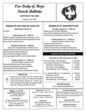 Fillable Online 1 Our Lady of Hope Parish Bulletin BAPTISM