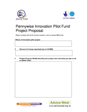 Pennywise Innovation Pilot Fund Project Proposaldoc - supporthub org