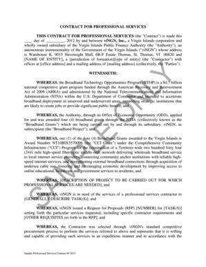 Sample Professional Services Contract - viNGN