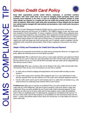 fillable credit card audit procedures templates to submit online in pdf. Black Bedroom Furniture Sets. Home Design Ideas