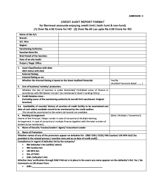 20 Printable audit report format Templates - Fillable