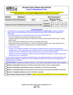 Level 2 Assessment Form