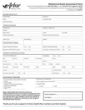 Fillable Online Obstetrical Needs Assessment Form - Provider ...