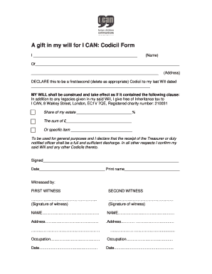Template Codicil Form - I CAN - ican org