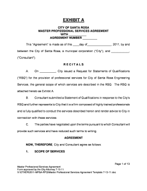 Master Professional Services Agreement Template 7 13 11.doc