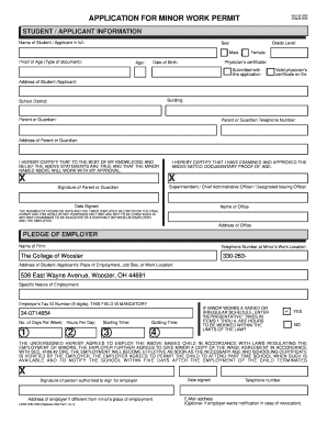 Fillable online minor work permit application the for Working at height permit to work template