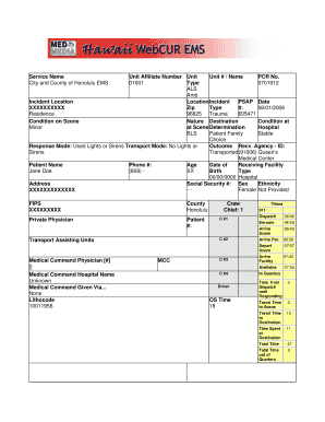 Hawaii EMS Patient Care Report - NHTSA Fill Online, Printable