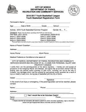 youth basketball registration form edit fill out. Black Bedroom Furniture Sets. Home Design Ideas