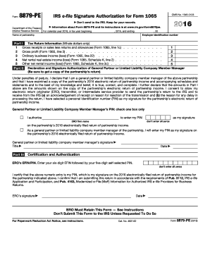 2016 Form IRS 8879-PE Fill Online, Printable, Fillable, Blank ...