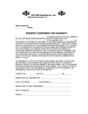 Editable indemnity bond sample format fill print download indemnity co signer agreement ace bail bonding platinumwayz