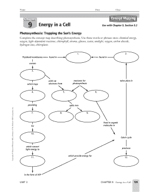 Chapter 9 Energy In A Cell Concept Mapping - Fill Online ...