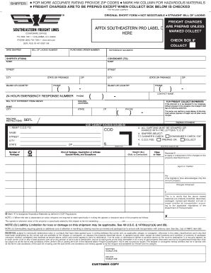 sefl bill of lading form