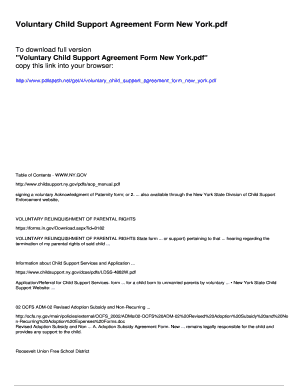 Voluntary Child Support Agreement Form New York