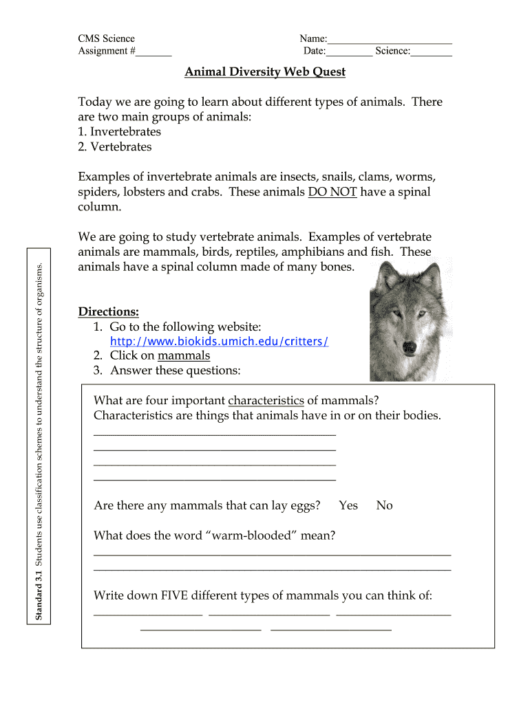 Animal Diversity Web Quest Fill Online Printable Fillable Blank Pdffiller