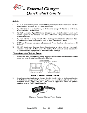 External Charger  External Audit Report Template