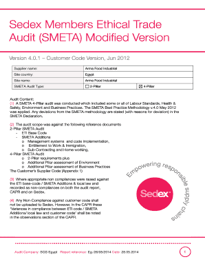 Printable audit observation example - Edit, Fill Out & Download