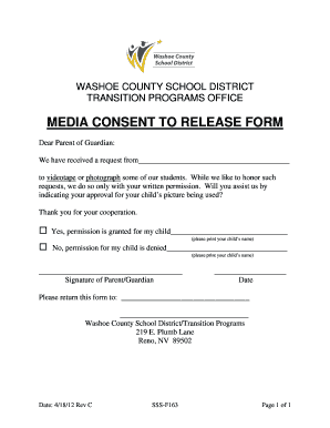 Photo Release Consent Form - Fill Online, Printable, Fillable ...