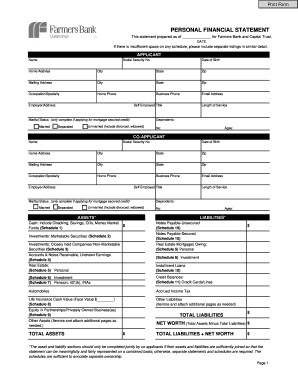 Superior Personal Financnial Statement Pdf Form
