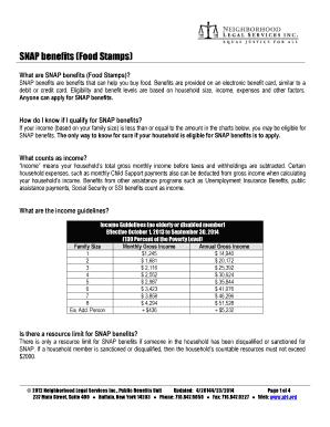 snap recertification online - Edit, Fill, Print & Download