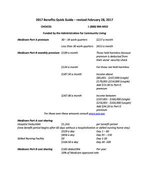 413458869 Paad Application Printable Form on
