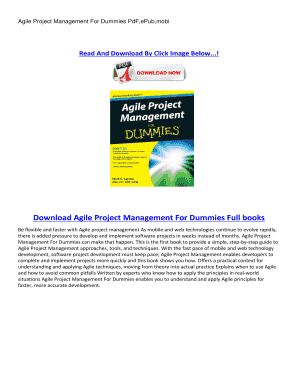 Project Management For Dummies Pdf