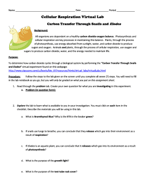 cellular respiration lab Cellular respiration is a lab that is often done in ap biology this worksheet follows a virtual module of the ap lab and asks students to answer questions as they progress through the virtual lab.
