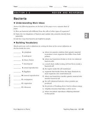 viruses and bacteria review and reinforce answers fill online printable fillable blank. Black Bedroom Furniture Sets. Home Design Ideas