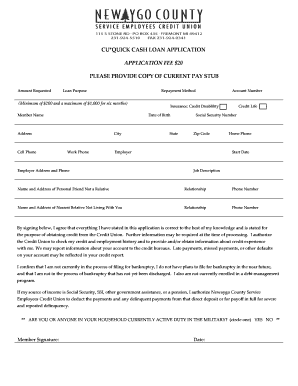 421567163 Quick Loan Application Form Template on printable blank, for mortgage, microsoft word, bank business, for car, panda bank credit, excel format, form for,