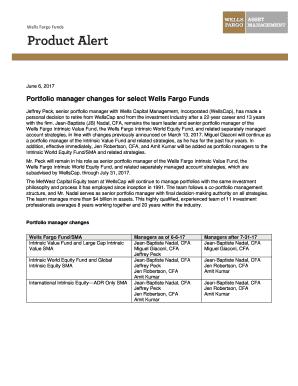 wells fargo proof of funds - Edit, Fill, Print & Download