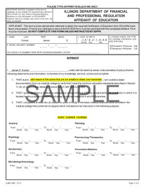 Editable financial affidavit form illinois - Fill, Print