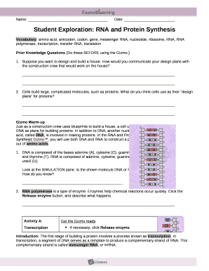student exploration rna and protein synthesis answer key ...