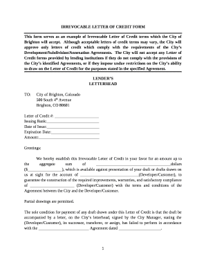 irrevocable letter of credit form