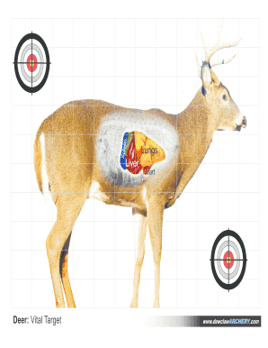 photo about Printable Deer Target titled Editable totally free printable deer vitals focus - Fill Out, Print