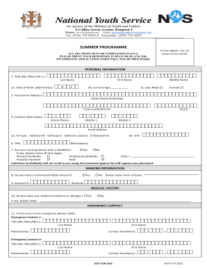 national youth service application form
