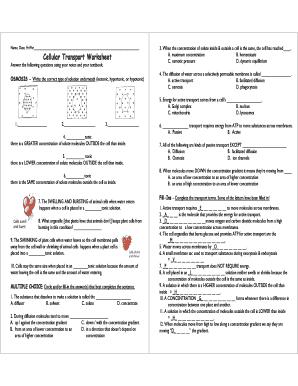 Fillable Online Cellular Transport Worksheet - English FCS Fax Email ...
