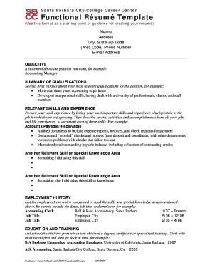 26 Printable An Example Of A Functional CV Forms and ...