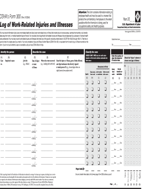 Osha Form 300 Templates - Fillable & Printable Samples for PDF ...