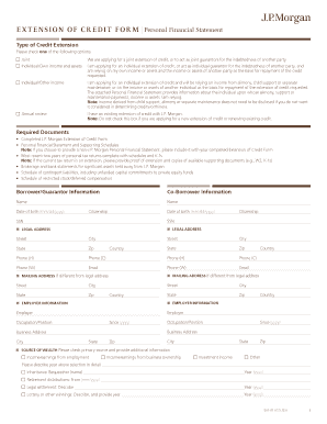 jp morgan personal financial statement form - Fillable Form