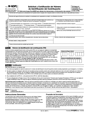 2018-2020 Form IRS W-9(SP) Fill Online, Printable