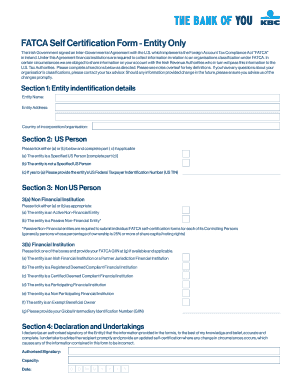 Fillable Online kbc FATCA Self Certification Form For Entities ...