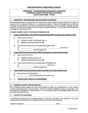 Fillable Online TX UM-UIM-PIP Form Fax Email Print - PDFfiller