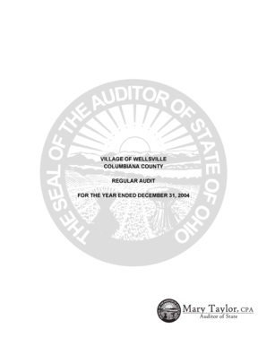 VILLAGE OF WELLSVILLE COLUMBIANA COUNTY REGULAR AUDIT FOR THE YEAR ENDED DECEMBER 31, 2004 VILLAGE OF WELLSVILLE COLUMBIANA COUNTY TABLE OF CONTENTS TITLE PAGE Independent Accountants Report - auditor state oh