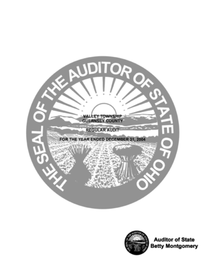 Valley township guernsey county regular audit for the year ended ... - auditor state oh