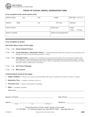 ds 160 blank form download pdf