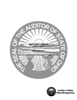 Bokescreek Township 02 01-Logan Report.doc - auditor state oh