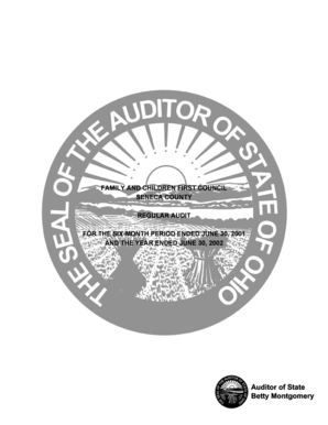 FOR THE SIX-MONTH PERIOD ENDED JUNE 30, 2001 - auditor state oh