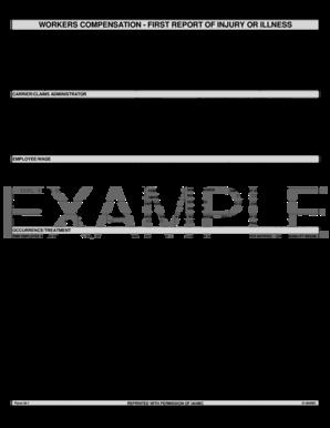 university of louisville application pdf